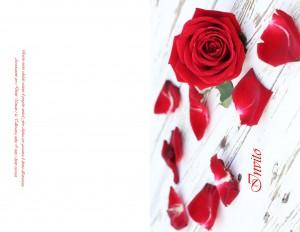 Invito Solidale Rose Rosse 1,50 euro cad